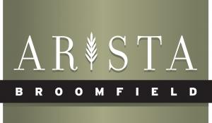 FINAL Arista logo